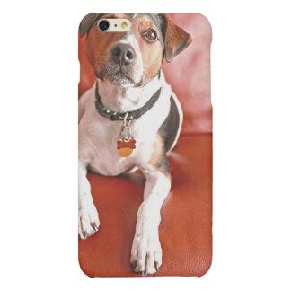 dog matte iPhone 6 plus case
