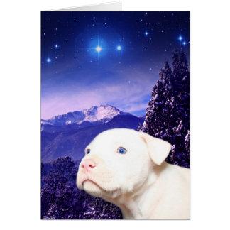 Dog is God spelled backwards... Greeting Cards