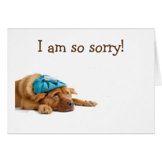 DOG IS SO SORRY HE CELEBRATED BIRTHDAY WITHOUT U CARD