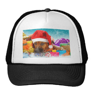 Dog is waiting for Christmas Trucker Hat