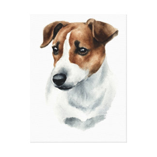 Dog Jack Russell Terrier ! Beautifull portrait! Canvas Print