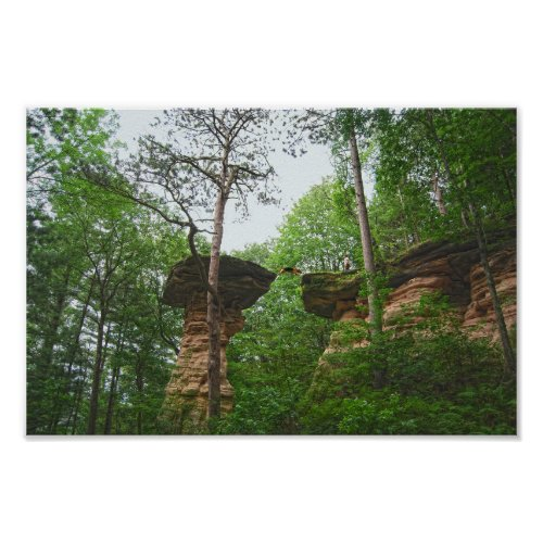 Dog Jumping from Stand Rock in Wisconsin Dells Poster