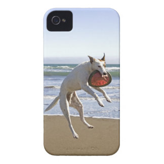 Dog jumping to catch a frisbee on beach iPhone 4 cover
