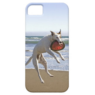 Dog jumping to catch a frisbee on beach iPhone SE/5/5s case