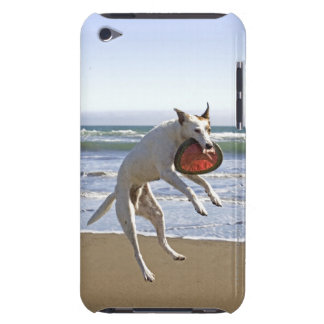Dog jumping to catch a frisbee on beach iPod Case-Mate case