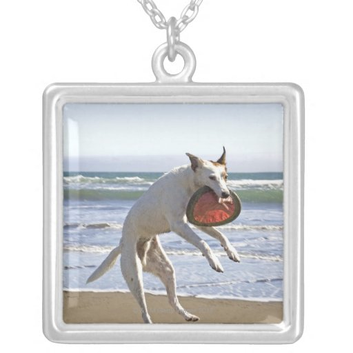 Dog jumping to catch a frisbee on beach square pendant necklace