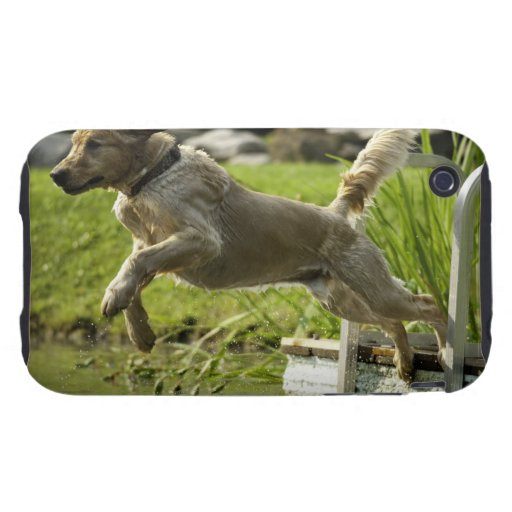 Dog jumps into pond iPhone 3 tough cover