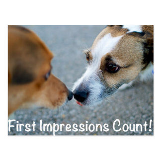 Dog kiss - first impressions count! postcard