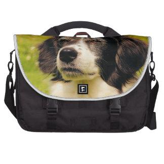 Dog Laptop Bag