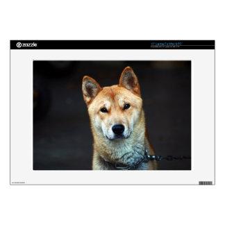 dog laptop decal