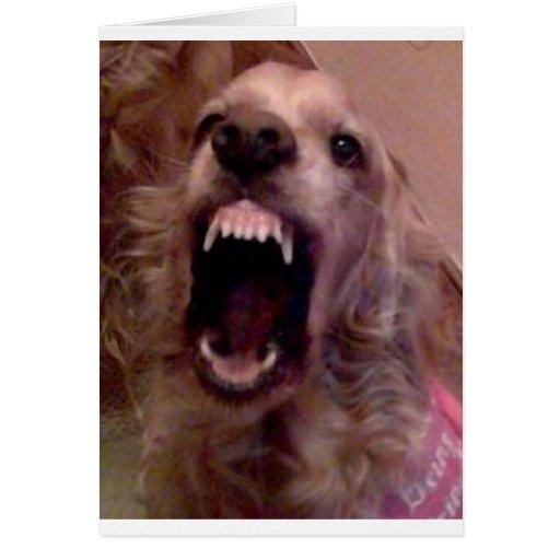 DOG laughing Card