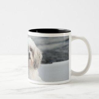Dog laying by the water coffee mugs