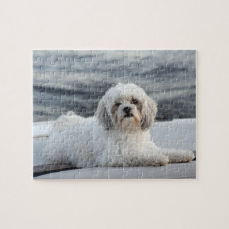 Dog laying by the water puzzle