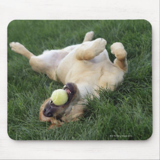 Dog laying upside down in grass with tennis ball mouse pad
