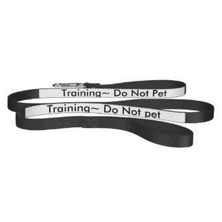 Dog leash ~ Training ~Do not pet!