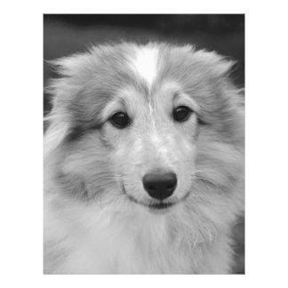 dog letterhead