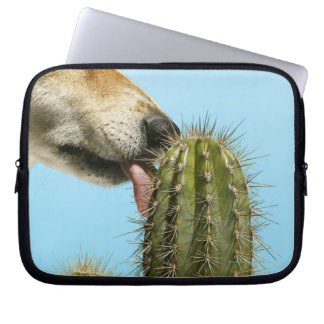 Dog licking cactus, close-up computer sleeve