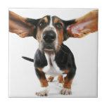 Dog long ears ceramic tiles