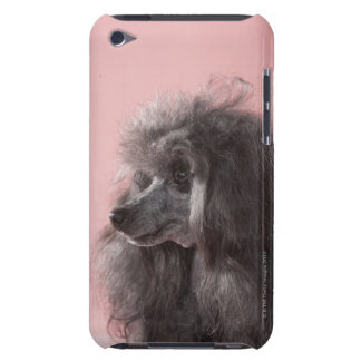 Dog looking away iPod touch case