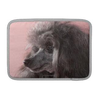 Dog looking away MacBook sleeves