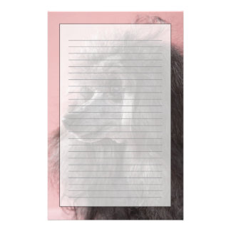 Dog looking away stationery