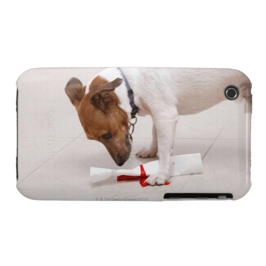 Dog looking down a diploma iPhone 3 Case-Mate case