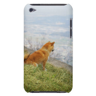 Dog looking down from on hill barely there iPod cases