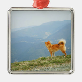 Dog looking down from on  hill metal ornament
