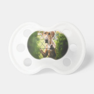 Dog Looking Through Fence BooginHead Pacifier