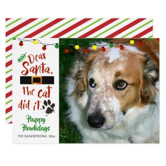 "Dog Lovers, ""Dear Santa, The Cat Did It""-1 Photo Card"