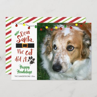 Dog Christmas card,