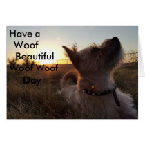 Dog lovers post card