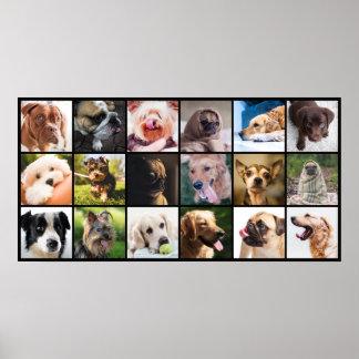 Dog Lover's poster