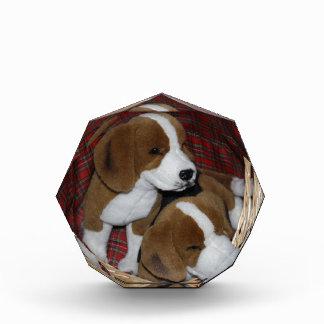 Dog Lovers - Soft Toy Award