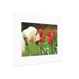 dog loves flower canvas print
