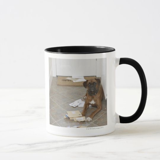 Dog lying by doormat and chewed mail mug