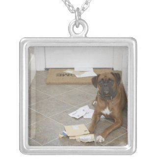 Dog lying by doormat and chewed mail silver plated necklace