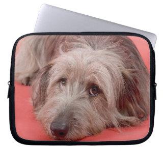 Dog lying down computer sleeve