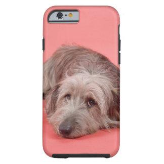 Dog lying down tough iPhone 6 case