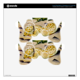 Dog Lying in the Snow by Franz Marc PS3 Controller Skin