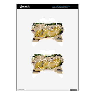 Dog Lying in the Snow by Franz Marc Xbox 360 Controller Decal