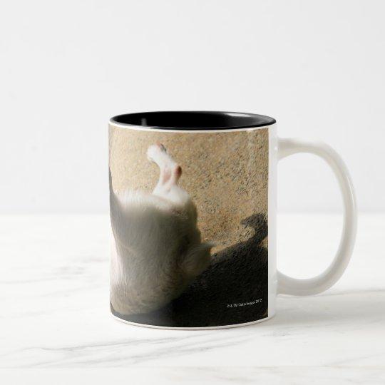 Dog lying on the floor Two-Tone coffee mug