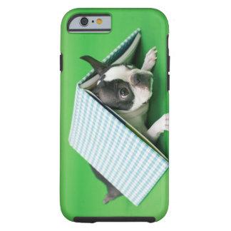 Dog lying under book tough iPhone 6 case