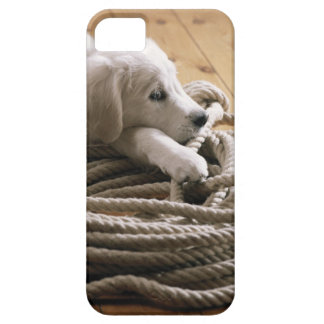 Dog lying with rope on wooden floor, elevated iPhone SE/5/5s case