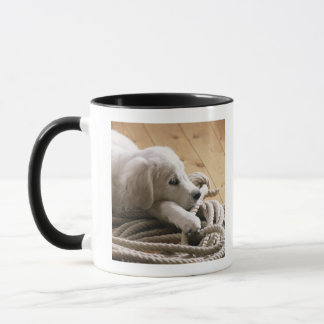 Dog lying with rope on wooden floor, elevated mug