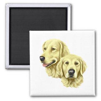 Dog Magnets - Golden Retrievers