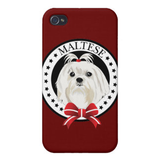 Dog Maltese Cases For iPhone 4