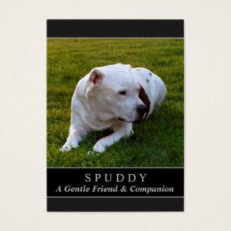 Dog Memorial Card - Black Photo Contented Poem
