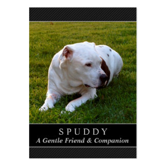 Dog Memorial Card - Black Photo Contented Poem Large Business Cards (Pack Of 100)