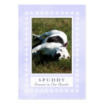 Dog Memorial Card - Heavenly Blue with Paw Prints